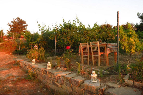 Afianes Winery & Ikarian Wine History & Folklore Museum ...